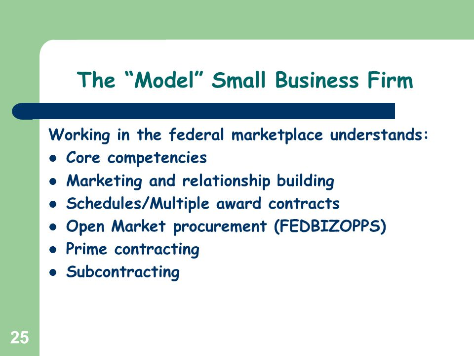 The Model Small Business Firm