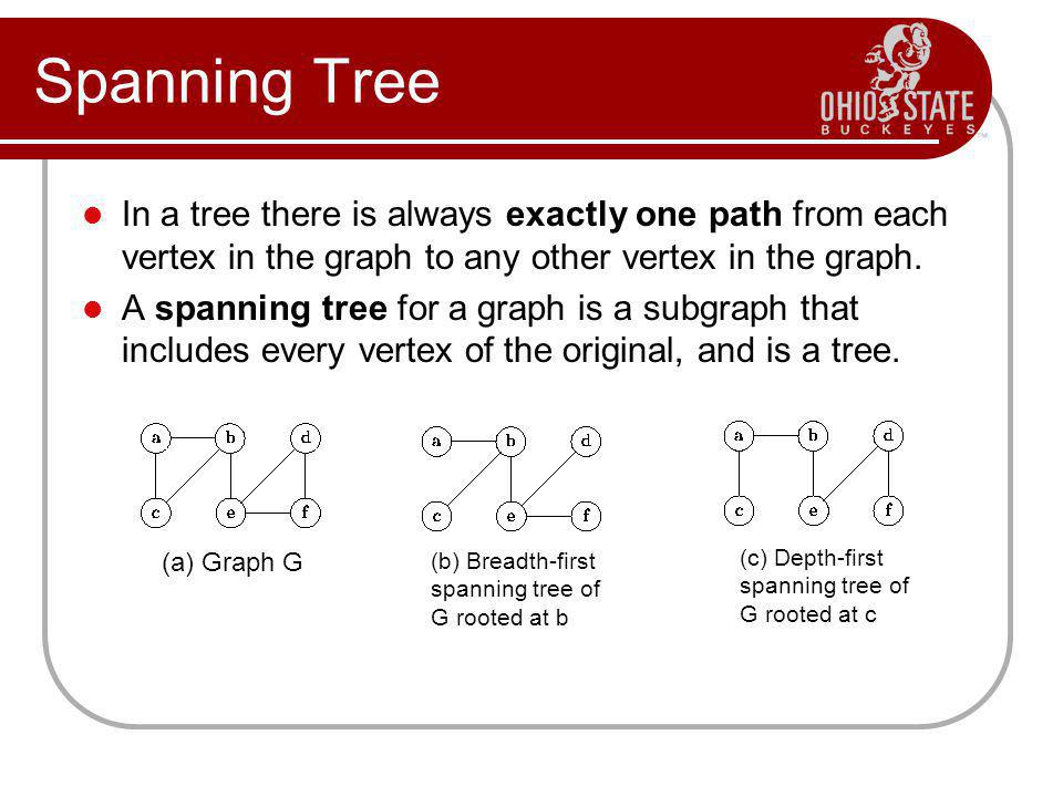 Spanning Tree In a tree there is always exactly one path from each vertex in the graph to any other vertex in the graph.