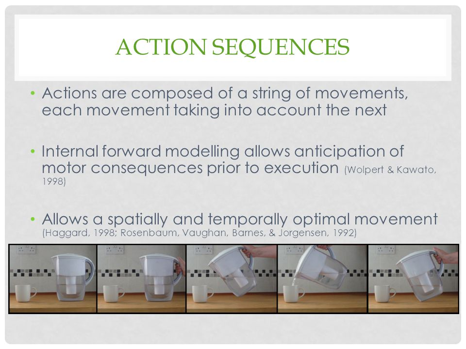 Action Sequences Actions are composed of a string of movements, each movement taking into account the next.