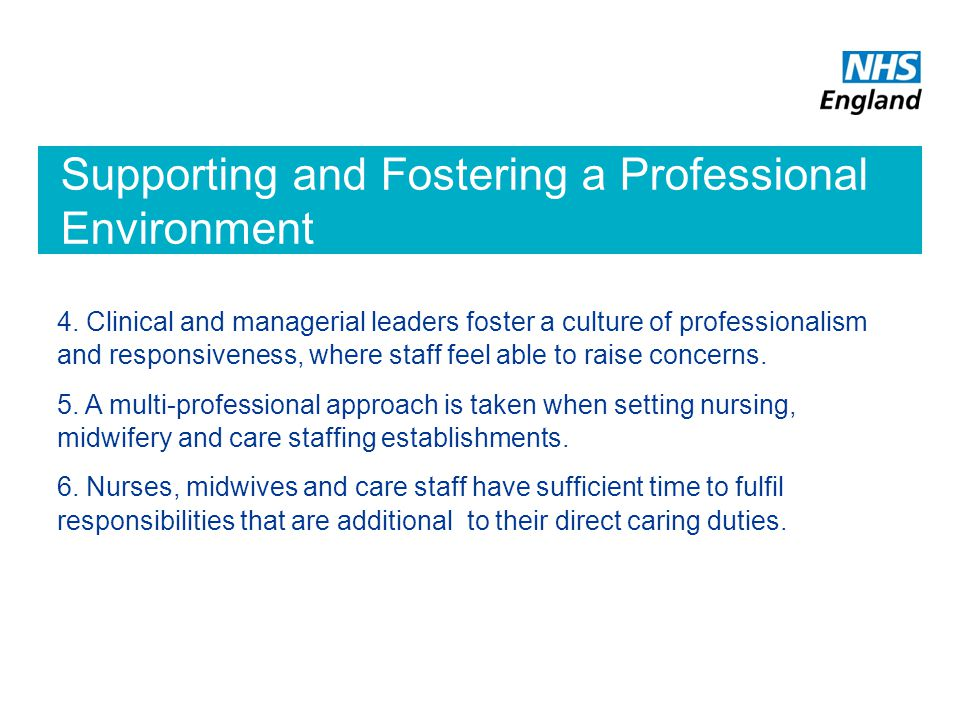 Supporting and Fostering a Professional Environment
