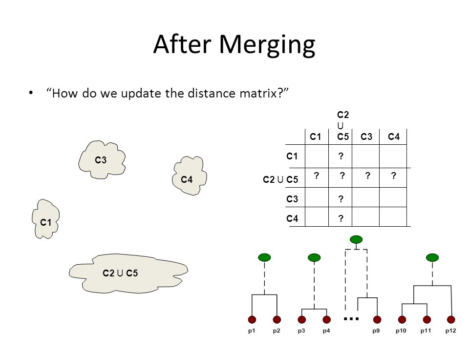 After Merging How do we update the distance matrix C2 U C5 C1 C3 C4