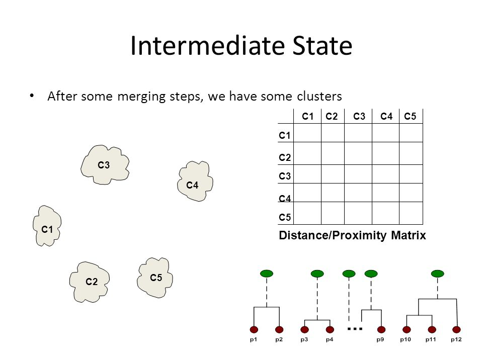 Intermediate State After some merging steps, we have some clusters