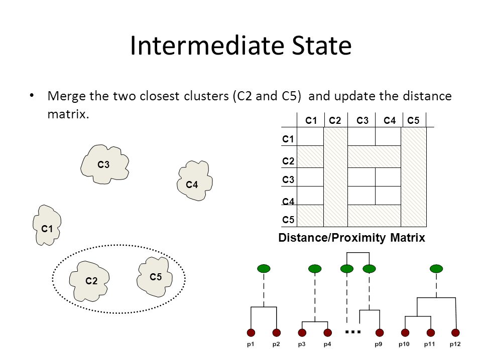 Intermediate State Merge the two closest clusters (C2 and C5) and update the distance matrix. C2.
