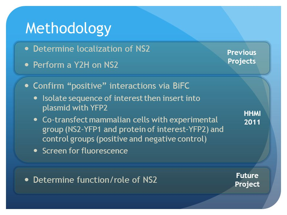 Methodology Determine localization of NS2 Perform a Y2H on NS2