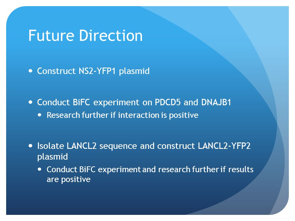 Future Direction Construct NS2-YFP1 plasmid