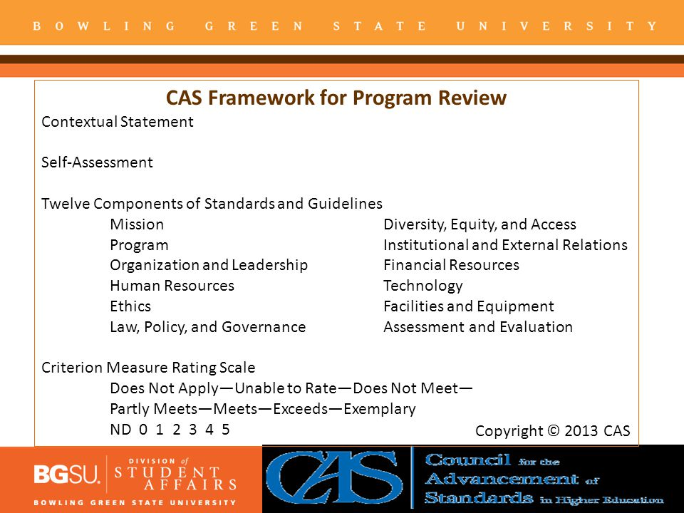 CAS Framework for Program Review