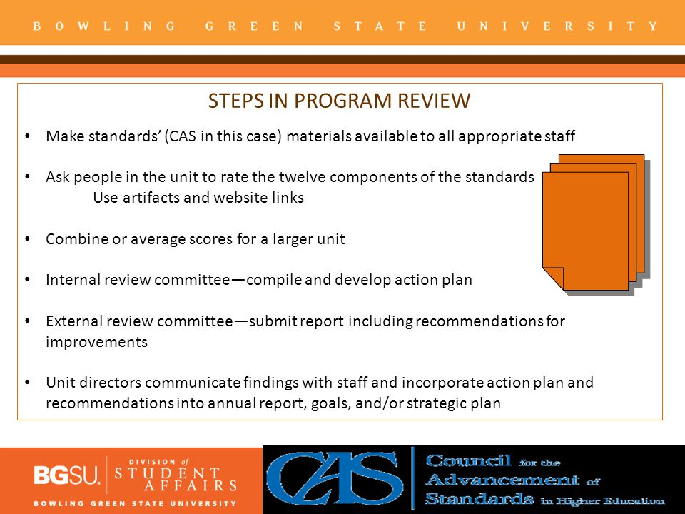 STEPS IN PROGRAM REVIEW