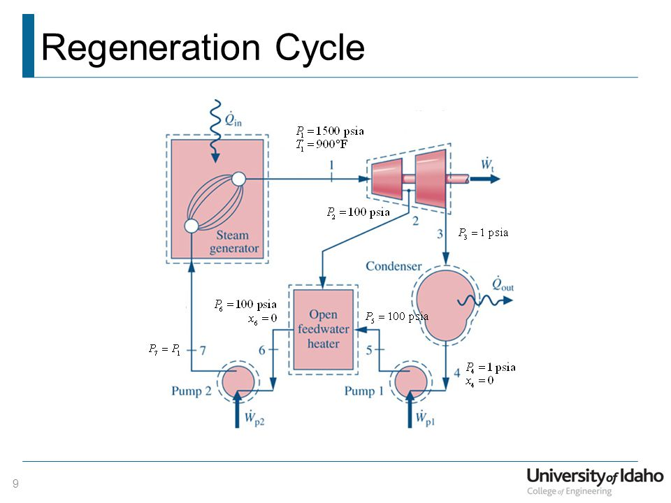 Regeneration Cycle