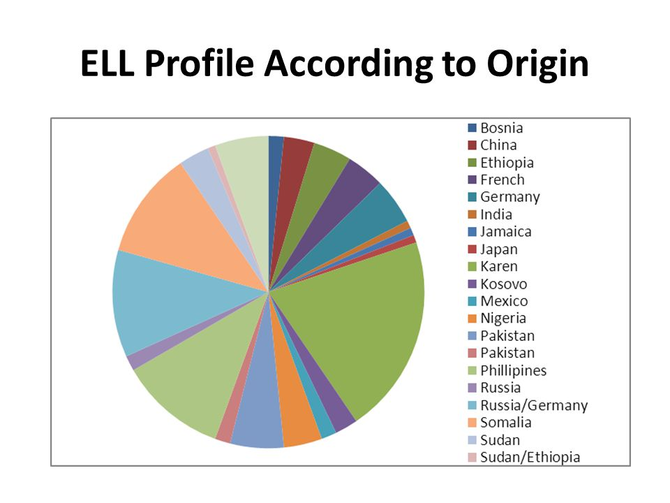 ELL Profile According to Origin