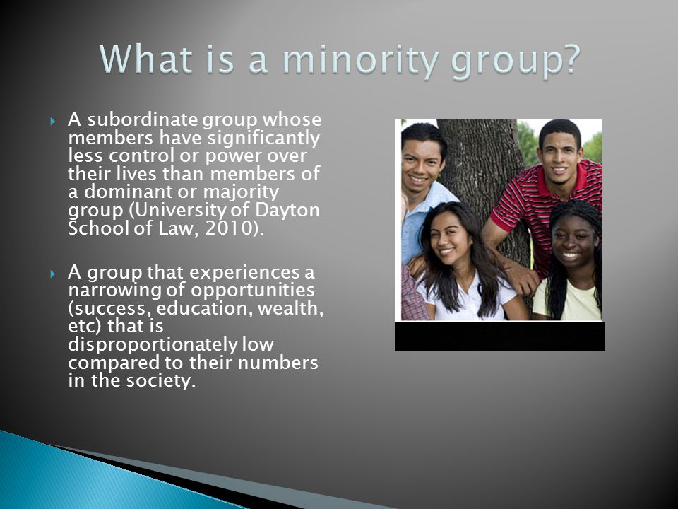 What is a minority group