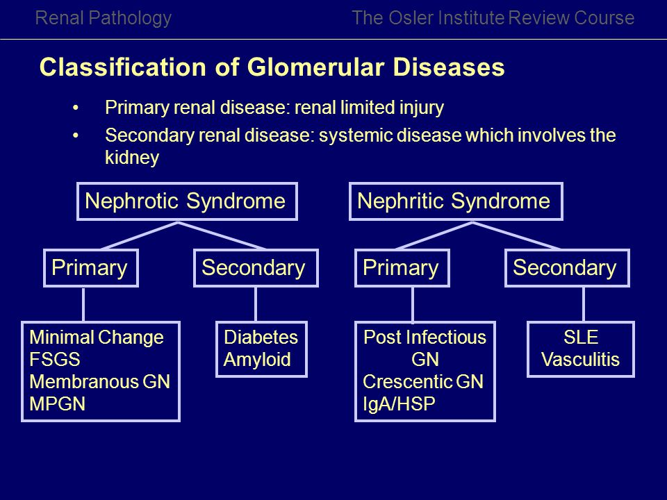 Classification of Glomerular Diseases