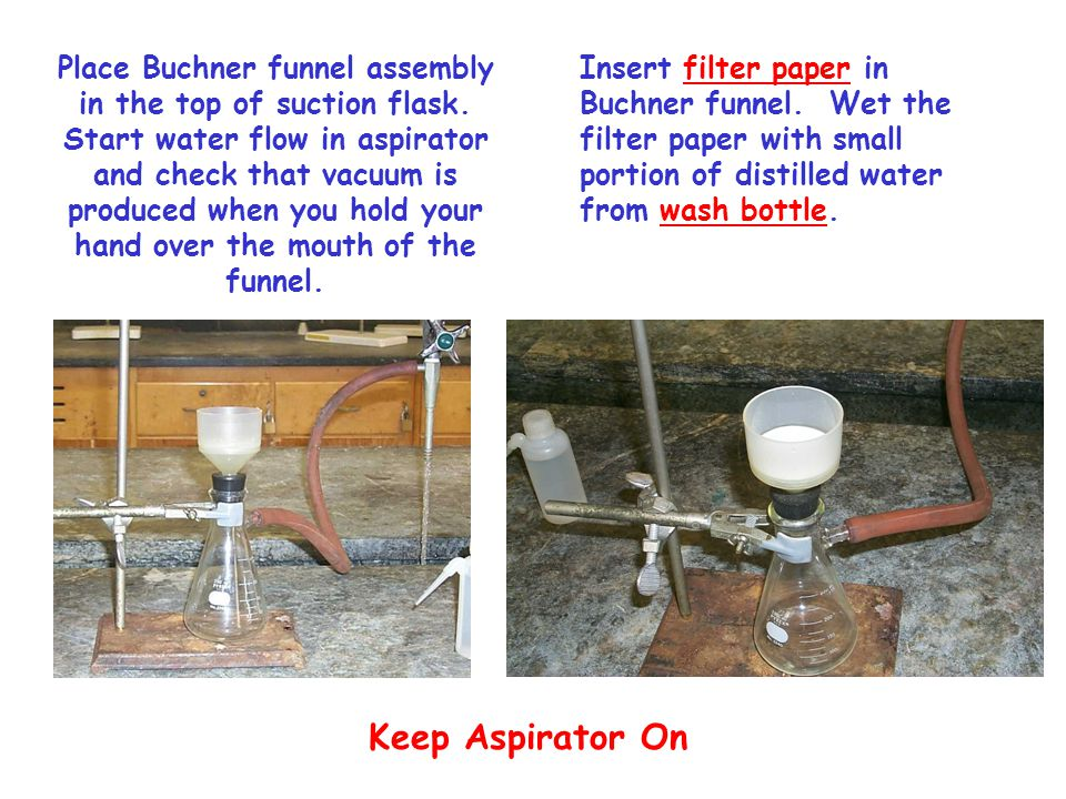 Place Buchner funnel assembly in the top of suction flask