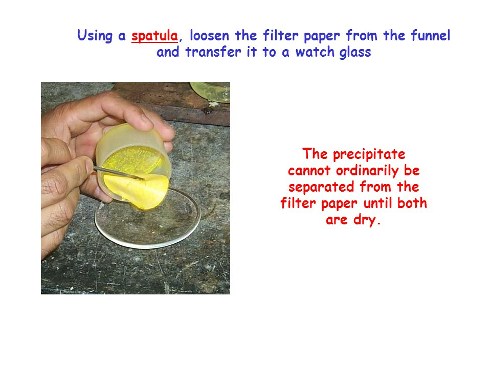Using a spatula, loosen the filter paper from the funnel and transfer it to a watch glass