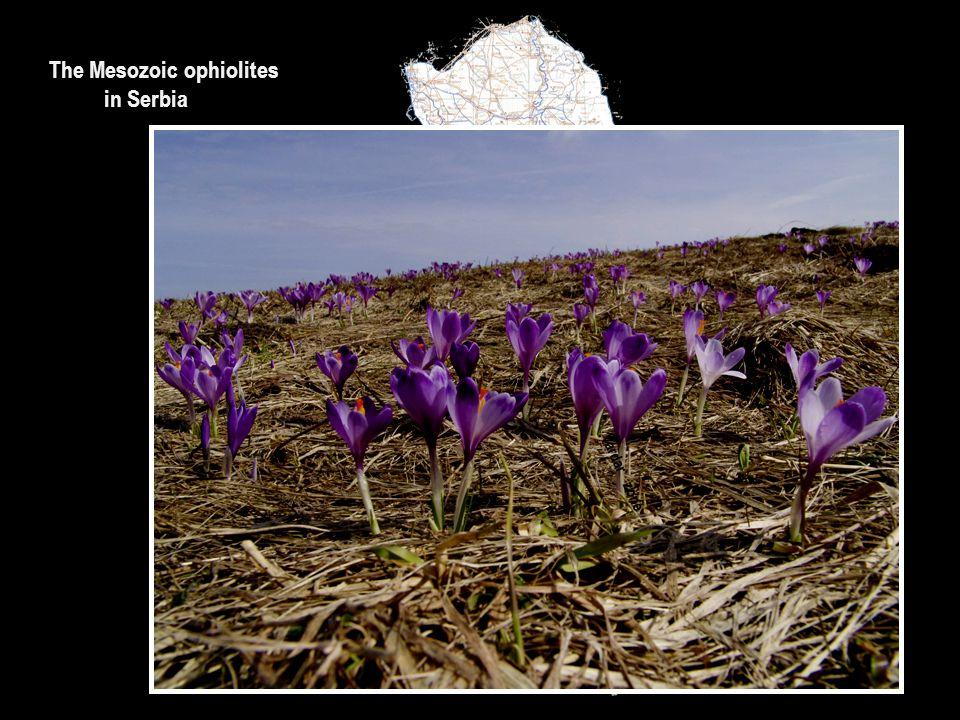 The Mesozoic ophiolites in Serbia TISSIA