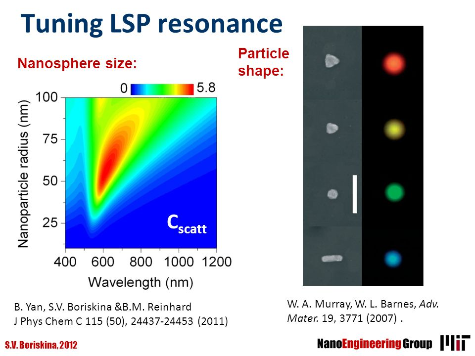 Tuning LSP resonance Cscatt Particle shape: Nanosphere size: