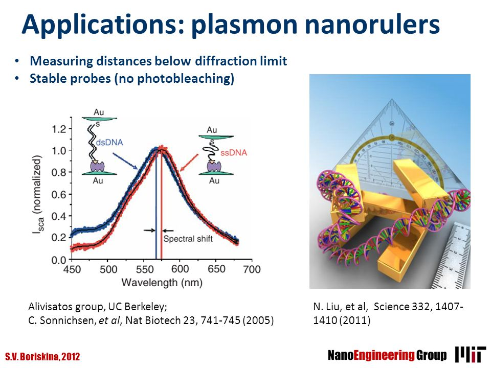 Applications: plasmon nanorulers