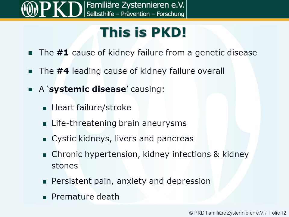 This is PKD! The #1 cause of kidney failure from a genetic disease