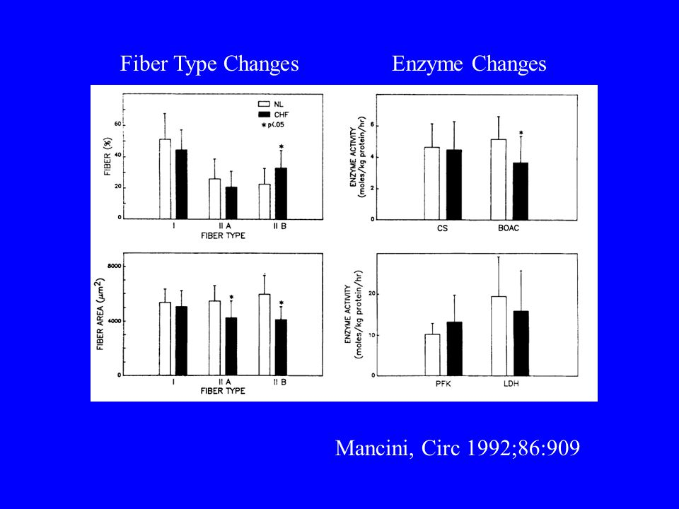 Fiber Type Changes Enzyme Changes Mancini, Circ 1992;86:909