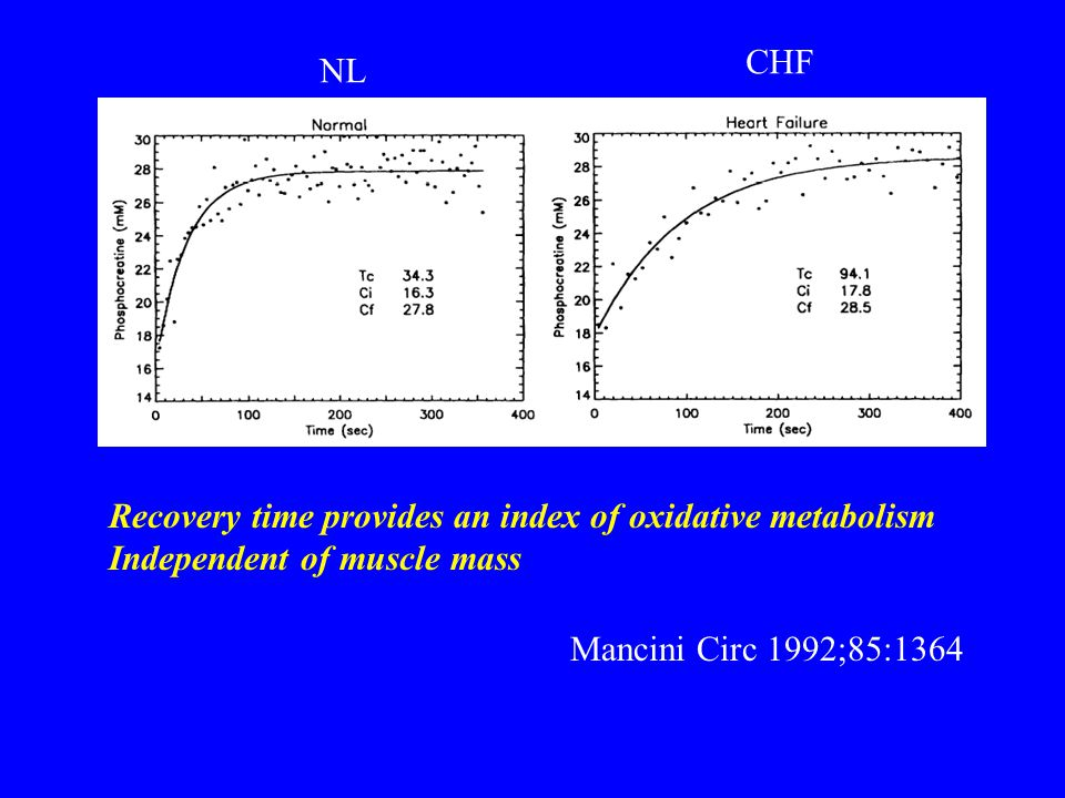 CHF NL. Recovery time provides an index of oxidative metabolism.