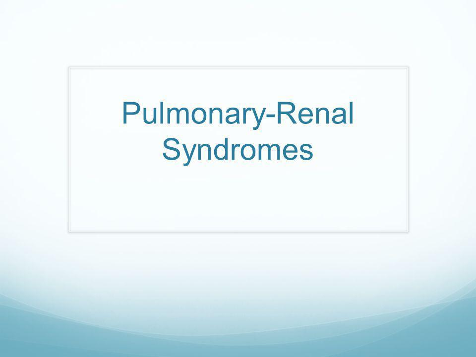 Pulmonary-Renal Syndromes