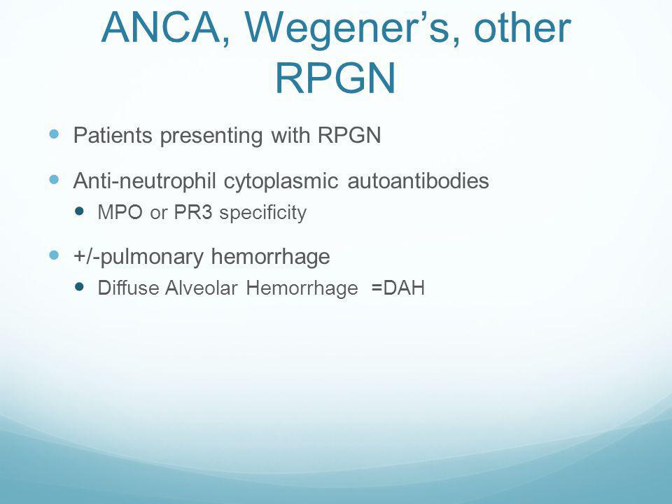 ANCA, Wegener's, other RPGN