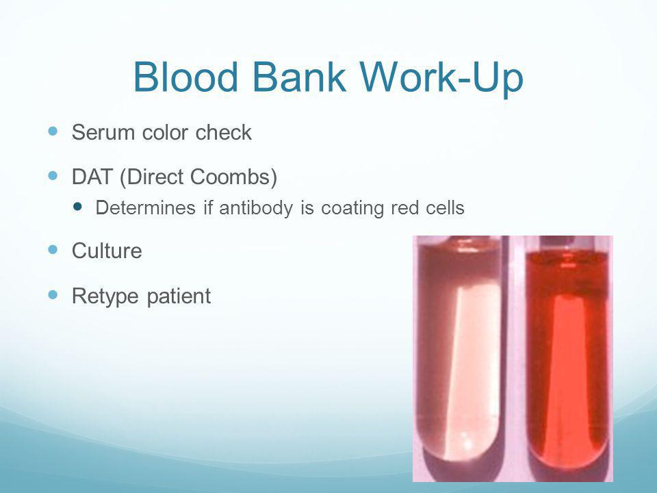 Blood Bank Work-Up Serum color check DAT (Direct Coombs) Culture