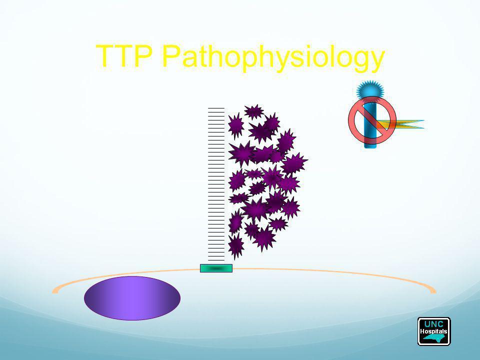 TTP Pathophysiology