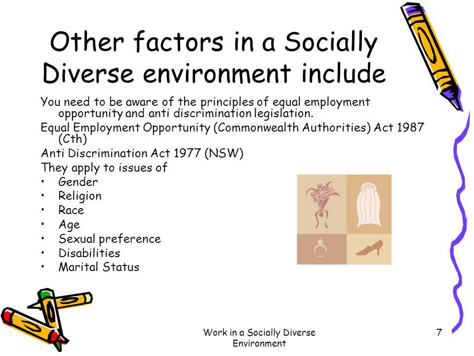 Other factors in a Socially Diverse environment include