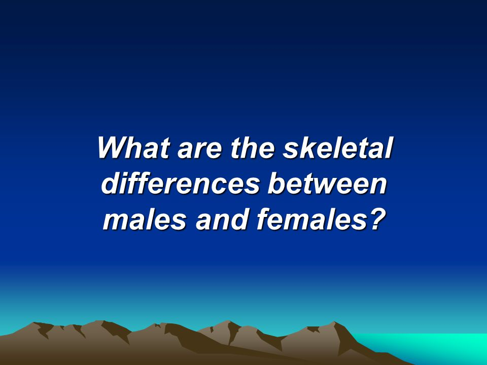 What are the skeletal differences between males and females