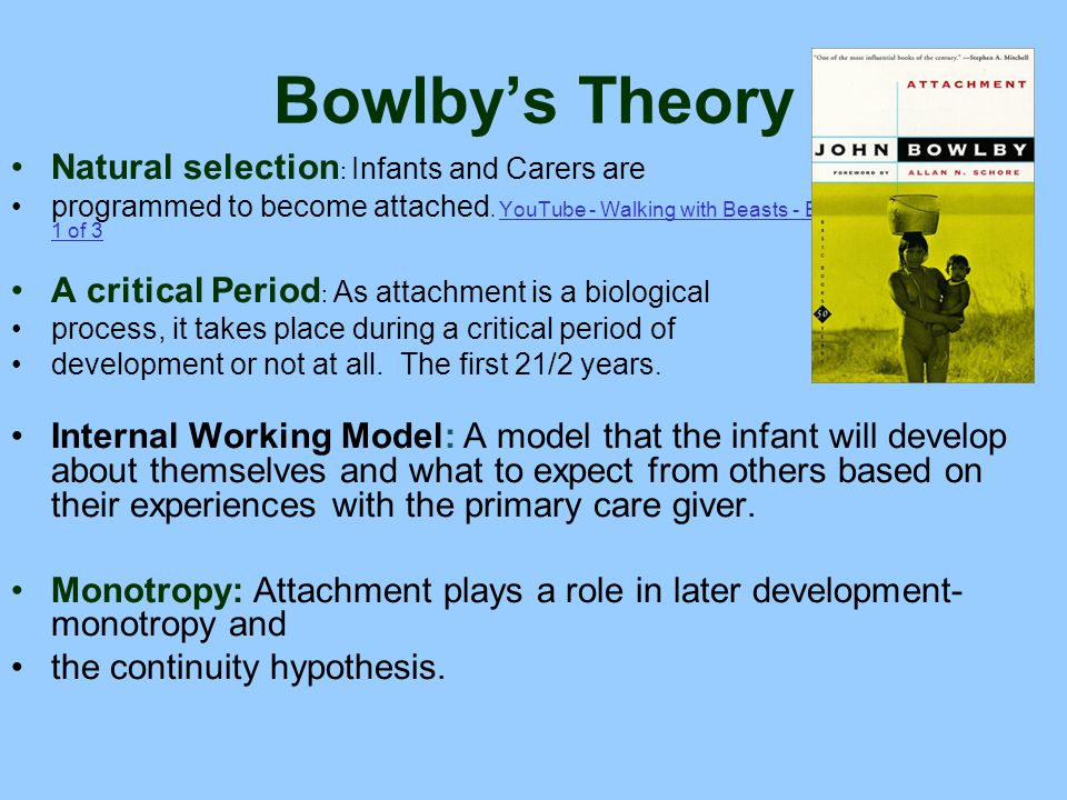 Bowlby's Theory Natural selection: Infants and Carers are