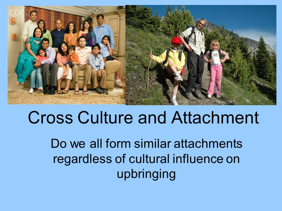 Cross Culture and Attachment