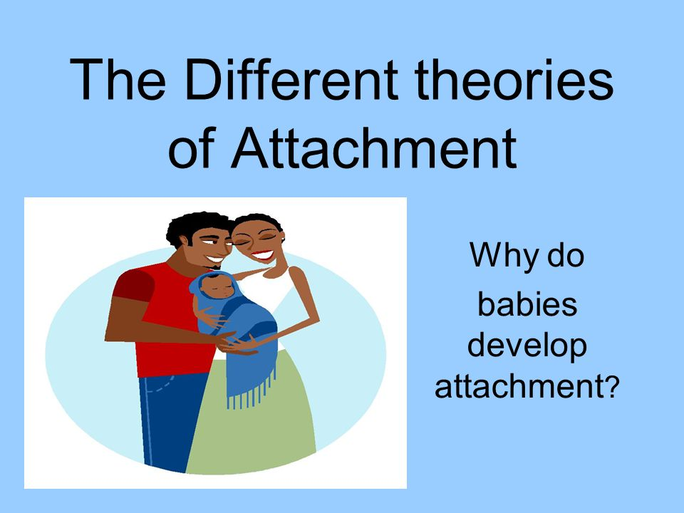 The Different theories of Attachment