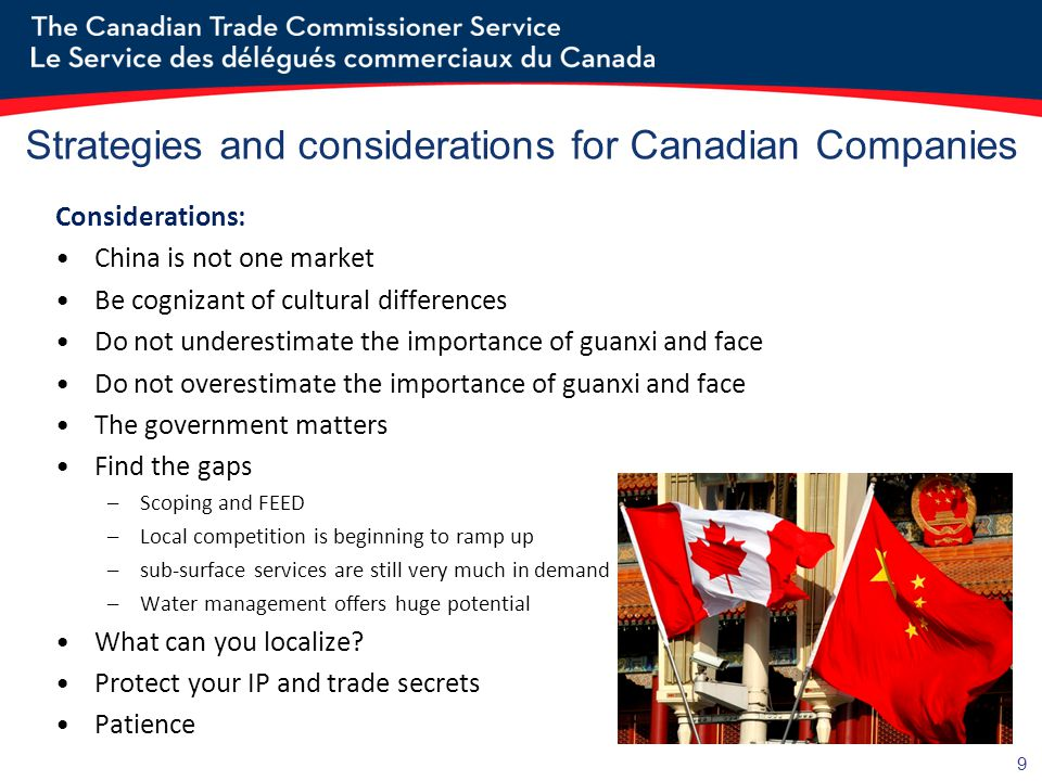 Strategies and considerations for Canadian Companies