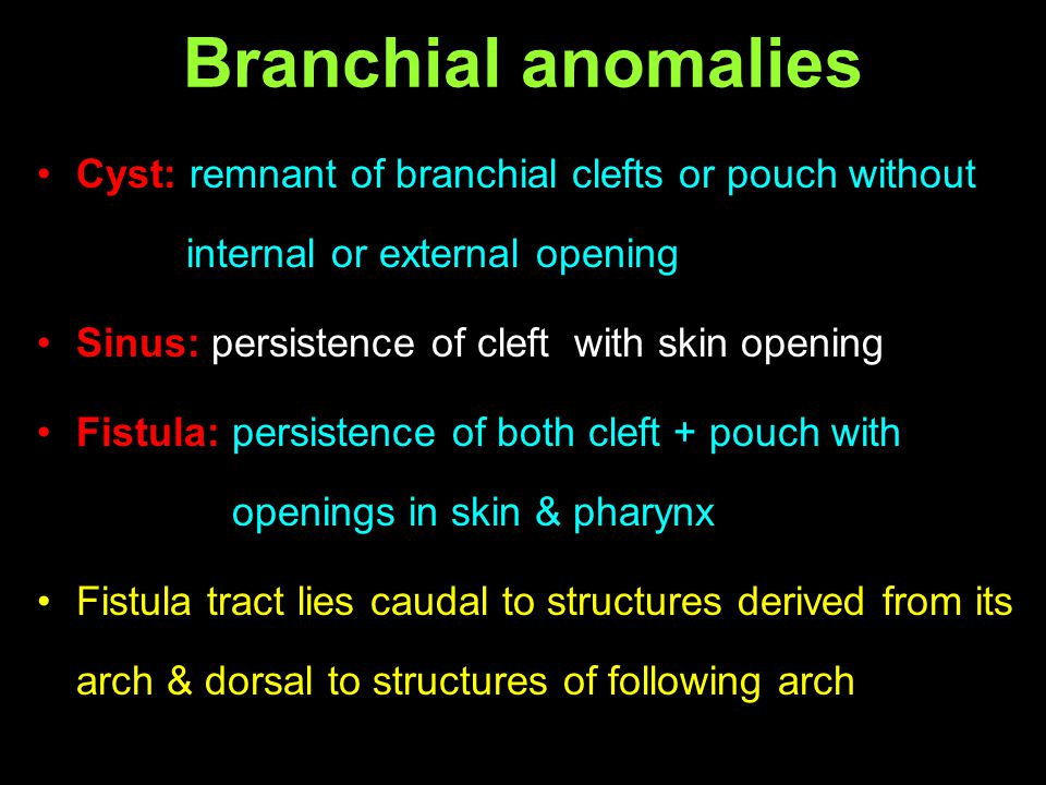 Branchial anomalies Cyst: remnant of branchial clefts or pouch without internal or external opening.