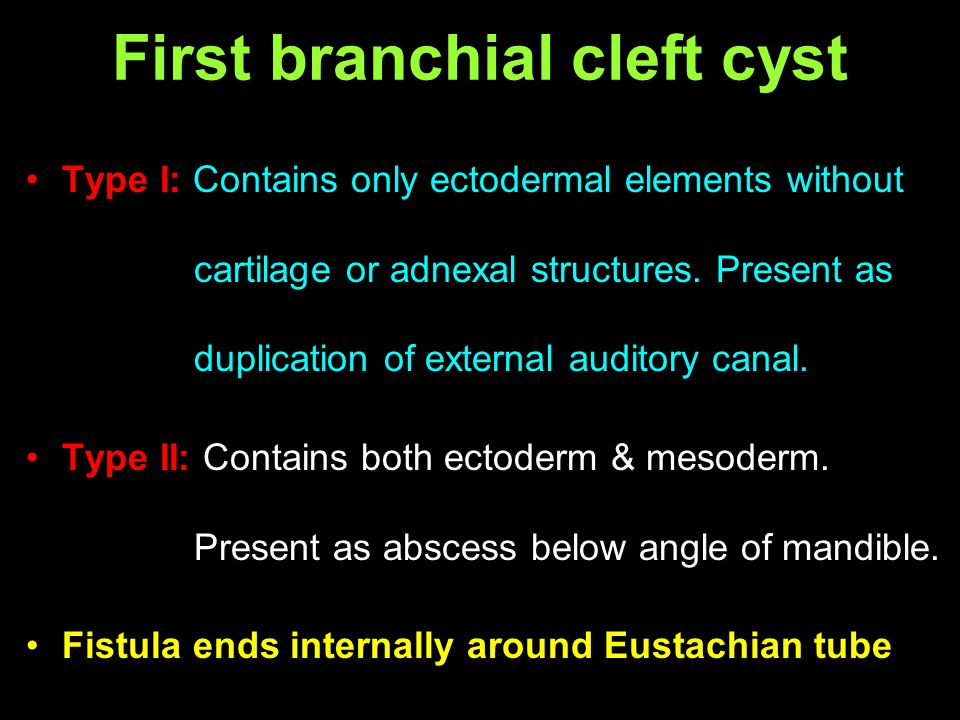 First branchial cleft cyst