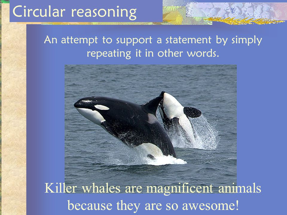 Killer whales are magnificent animals because they are so awesome!