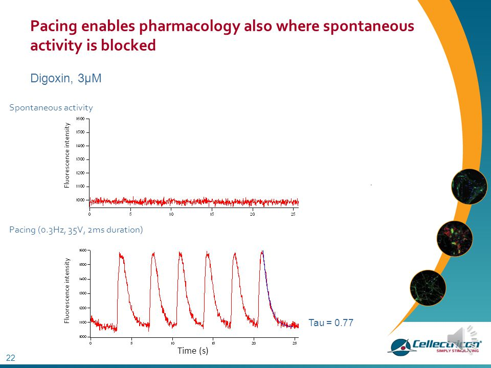 Pacing enables pharmacology also where spontaneous activity is blocked