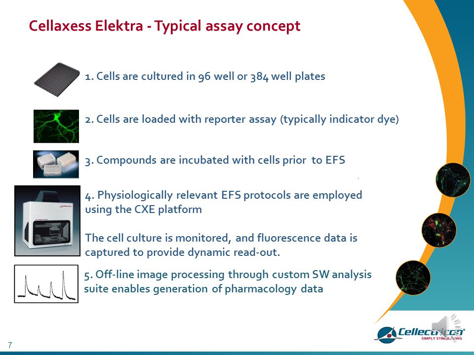 Cellaxess Elektra - Typical assay concept