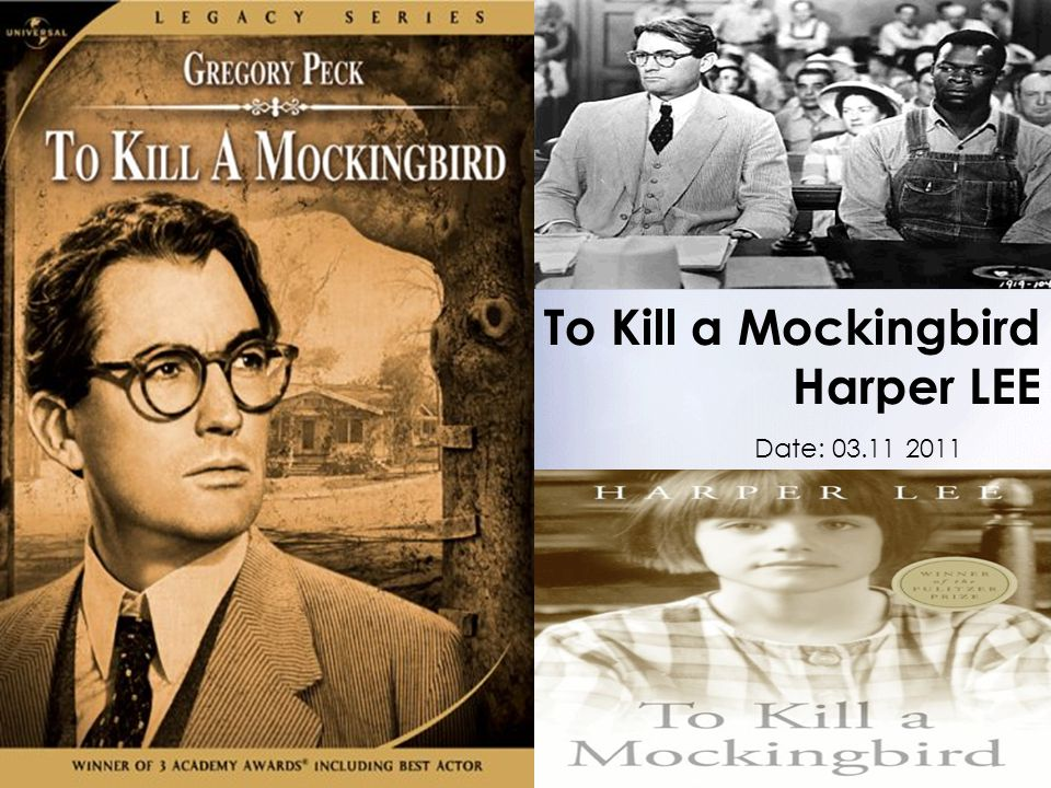 how to kill a mockingbird pdf download