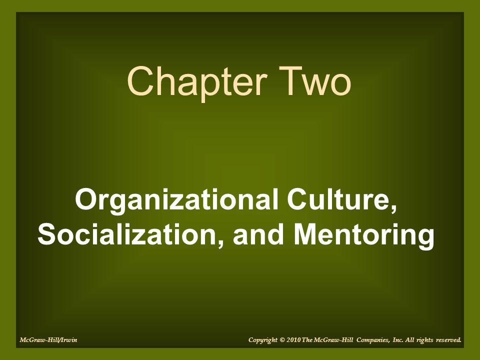 Organizational Culture, Socialization, and Mentoring