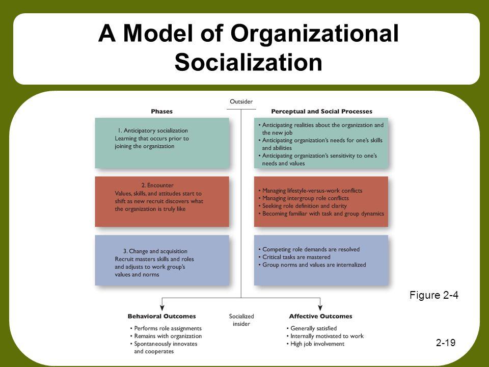 A Model of Organizational Socialization