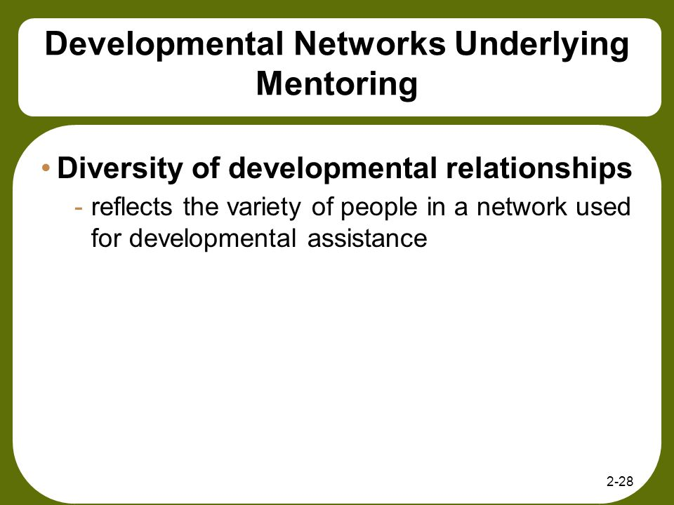 Developmental Networks Underlying Mentoring