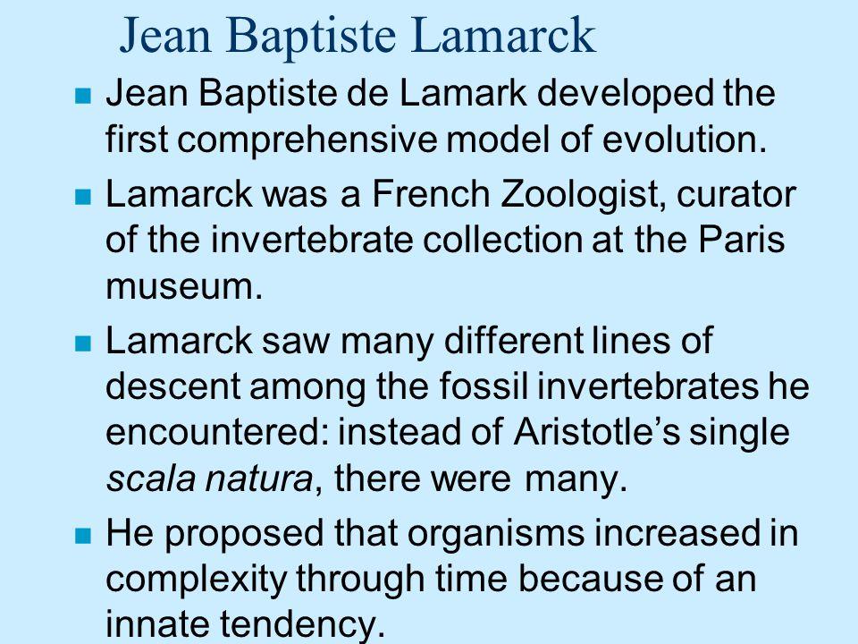Jean Baptiste Lamarck Jean Baptiste de Lamark developed the first comprehensive model of evolution.