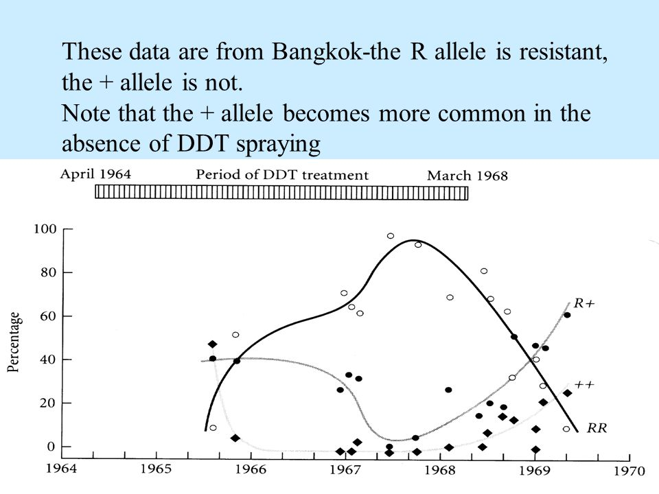 These data are from Bangkok-the R allele is resistant, the + allele is not.
