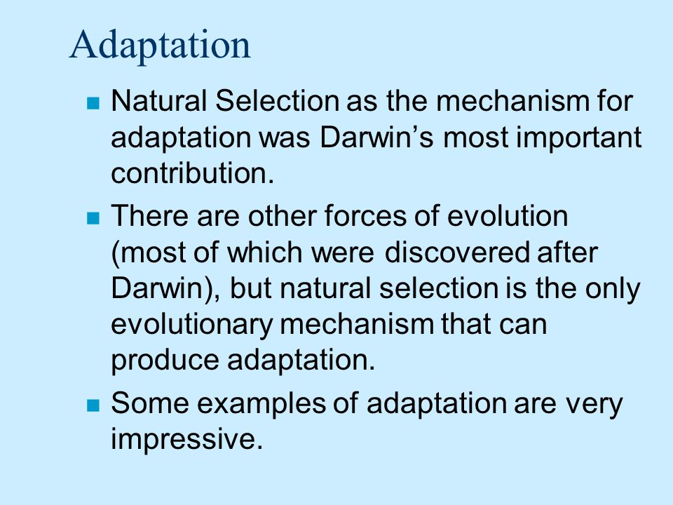 Adaptation Natural Selection as the mechanism for adaptation was Darwin's most important contribution.