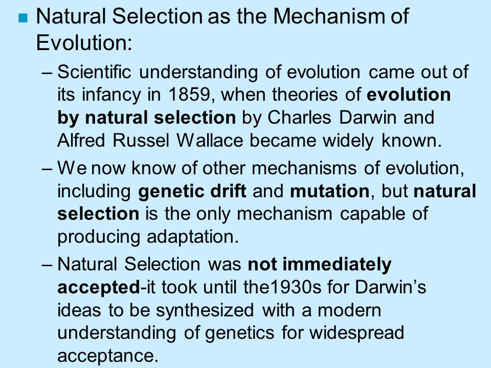 Natural Selection as the Mechanism of Evolution: