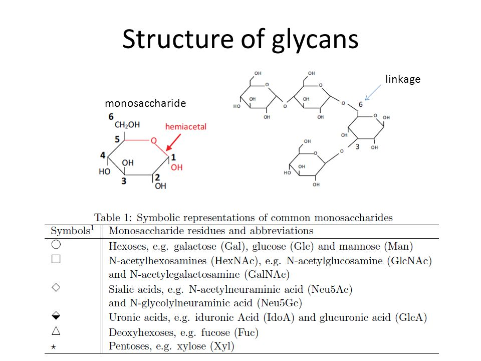 Structure of glycans linkage monosaccharide