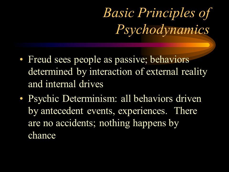 Basic Principles of Psychodynamics
