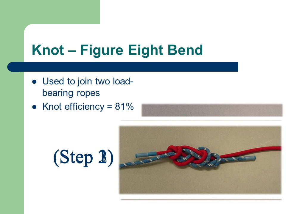 Knot – Figure Eight Bend