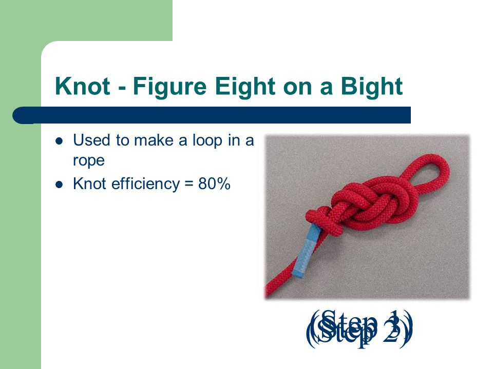 Knot - Figure Eight on a Bight